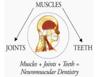Neuromuscular Dentistry Diagram